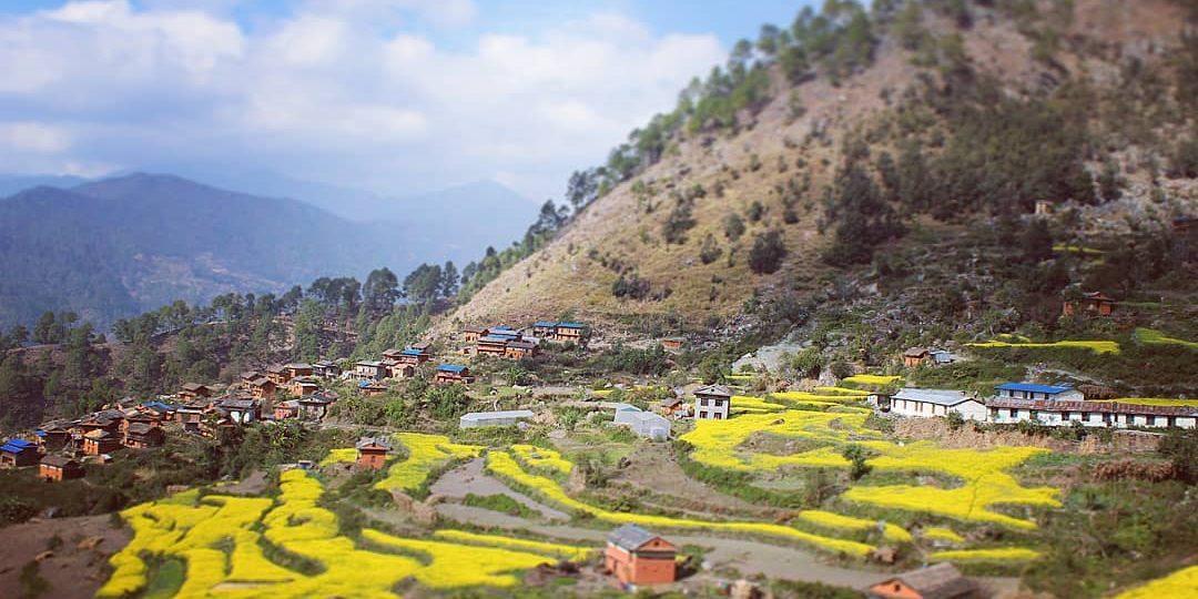 DMC in Nepal
