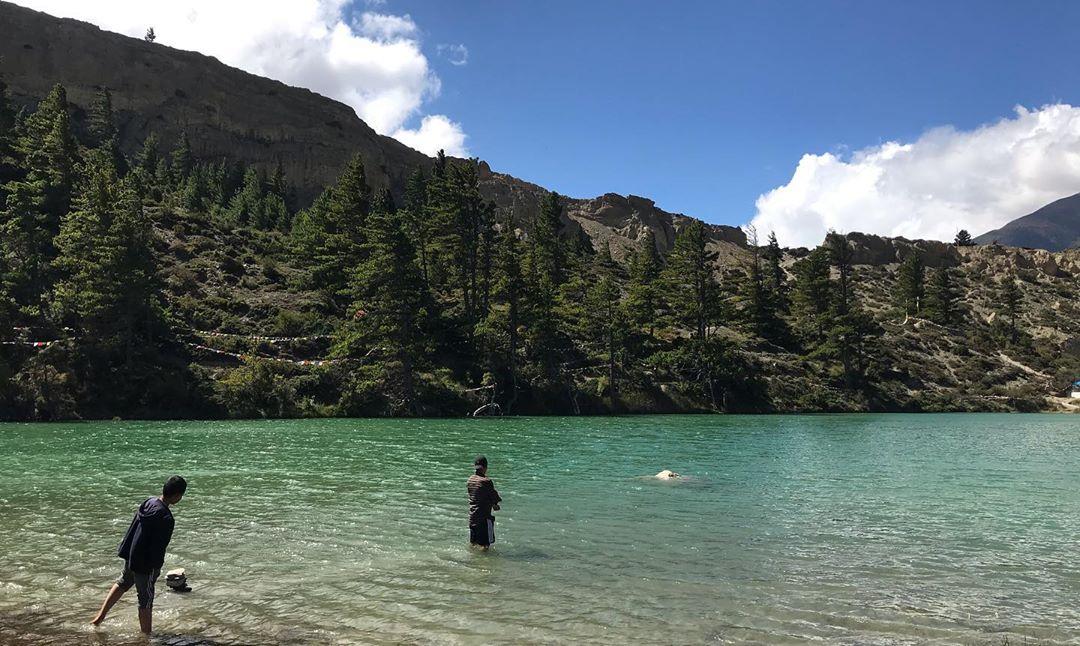 Dhumba Lake Mustang