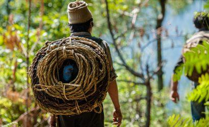 Honey Hunting Nepal