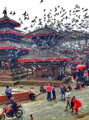 Day Tour Nepal