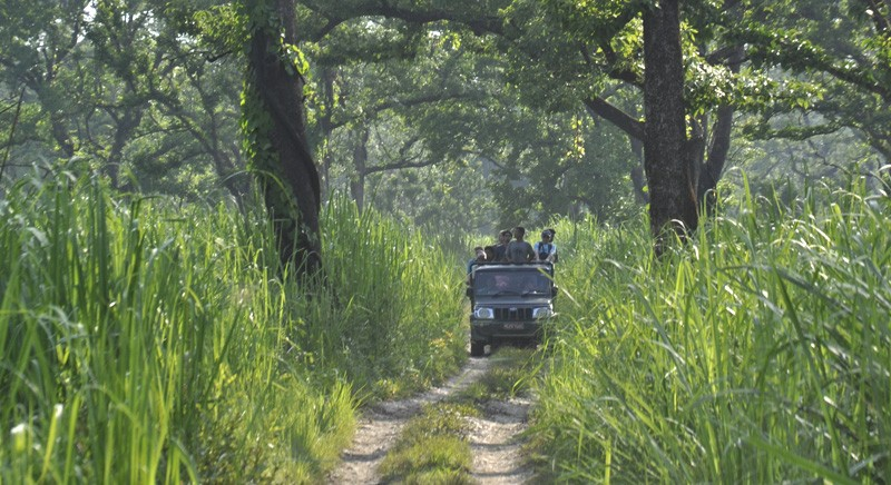 Jeep Safari cost in Chitwan National Park