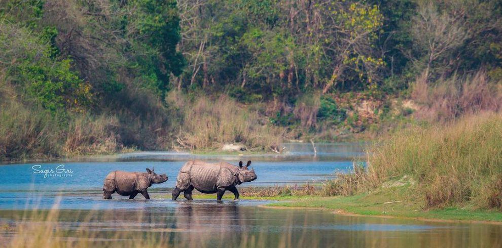 Chitwan Tour Package
