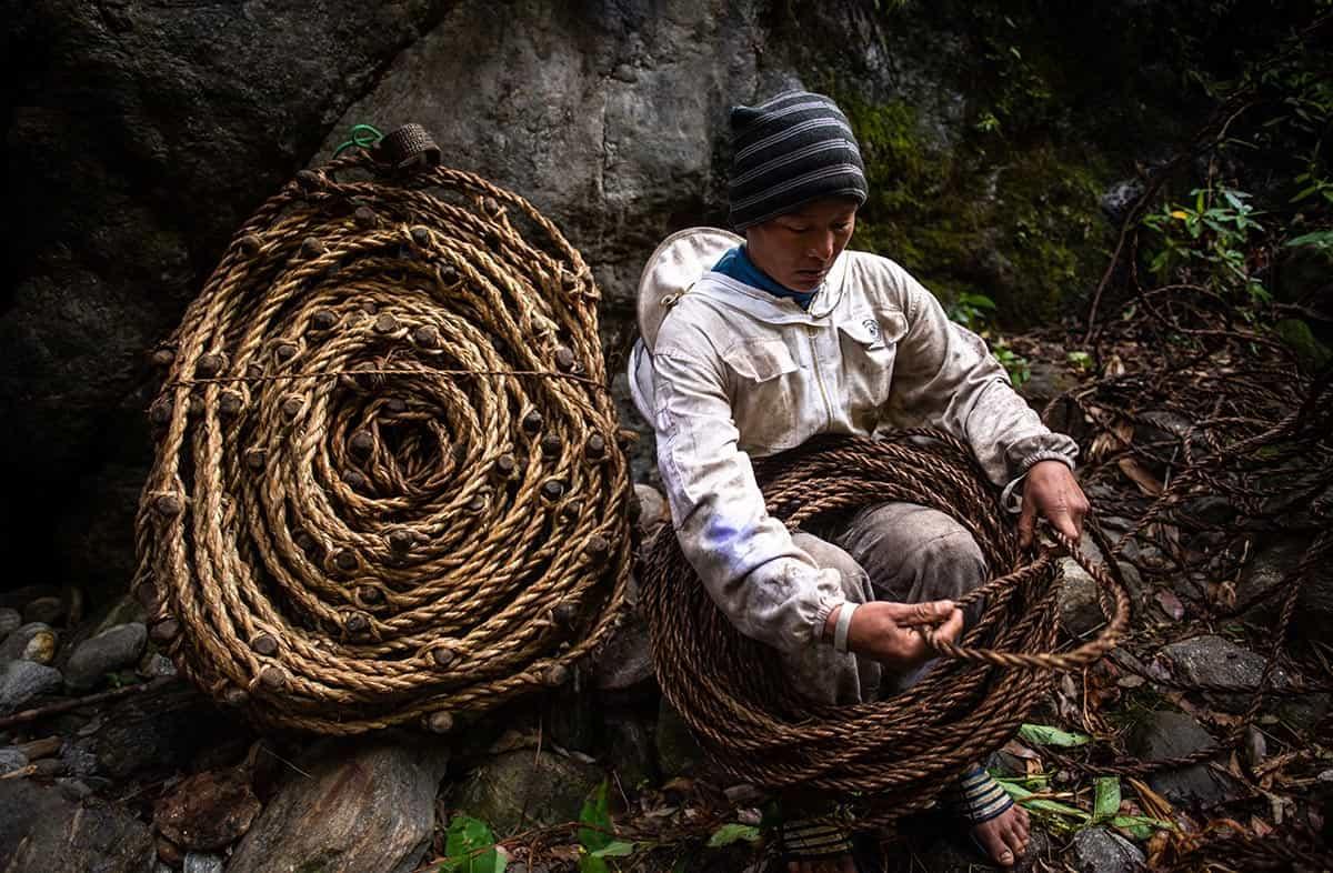 Wild Honey Nepal